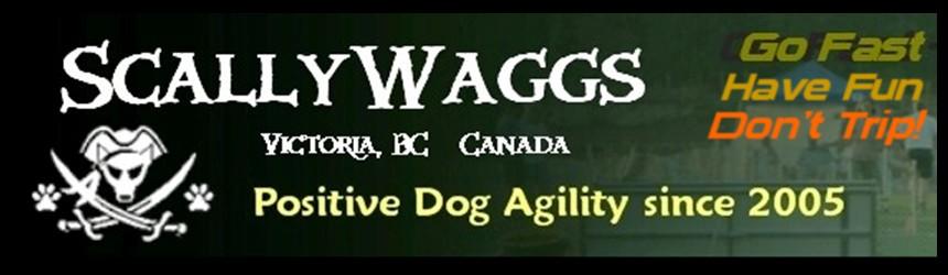 ScallyWaggs NADAC Agility